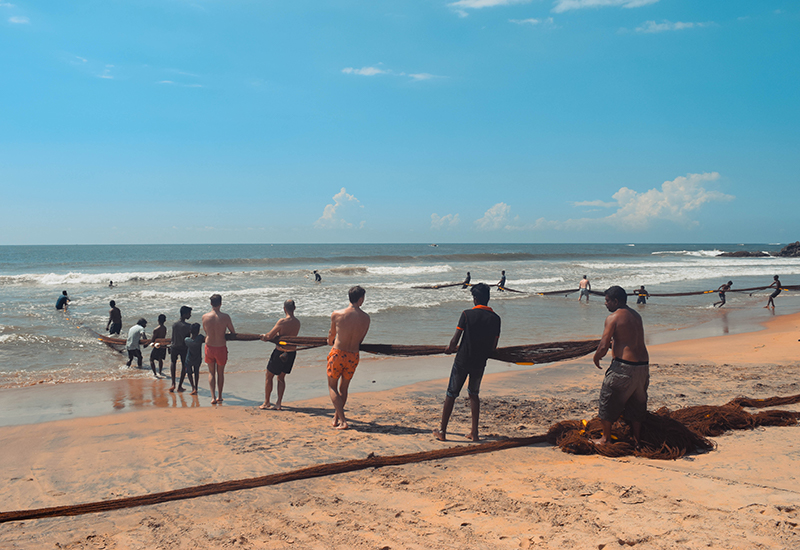 Fishing with nets in Sri Lanka Gintota beach
