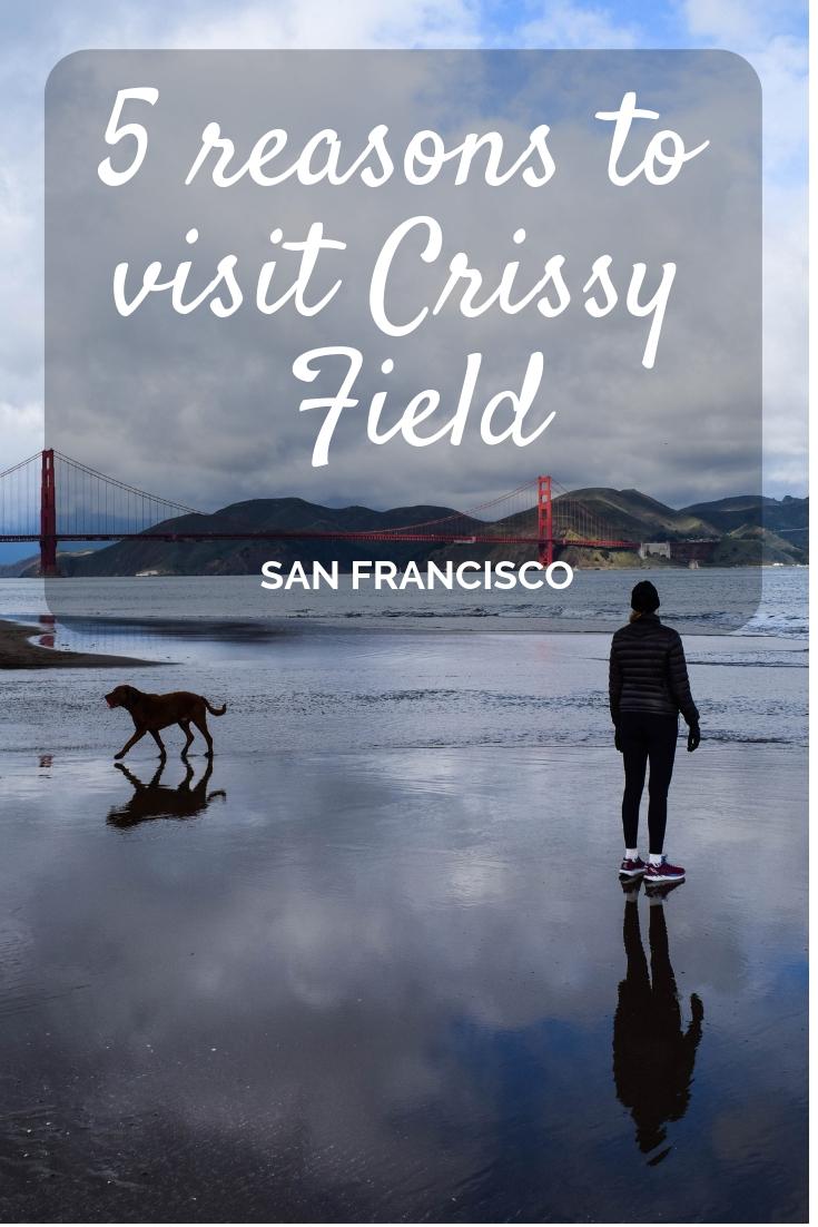 5 reasons to visit Crissy Field, San Francisco