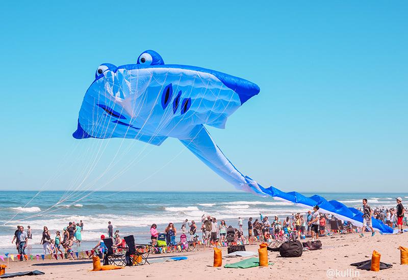 Kite Festival Lincoln City