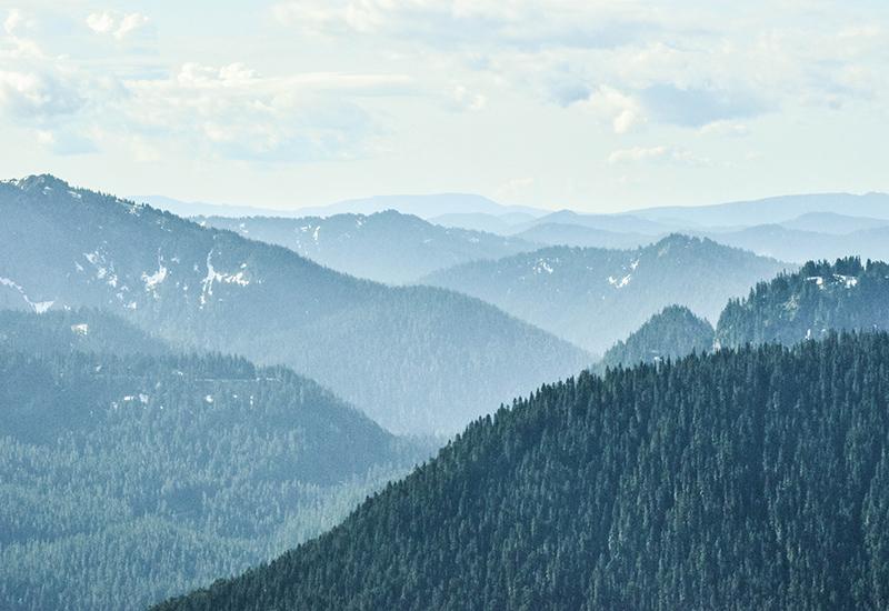 view of mt rainier national park